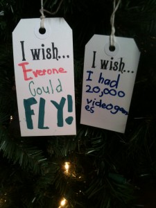 I wish everyone could fly!