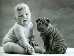 wrinkled babies